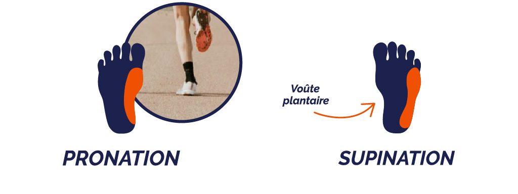 Pronation / Supination